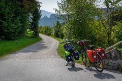 An dem Alpe-Adria-Radweg, Österreich (Janos Kertesz) Tags: radweg fahrrad alpeadriaradweg österreich sport bike bicycle nature cycling mountain forest outdoors helmet health recreation tree green action fun