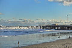 On the Beach (gabi-h) Tags: atlanticcity beach pier waves sand birds shorebirds water gabih ocean sky roughwater choppy atlanticocean sea blue white puffyclouds pilings spring