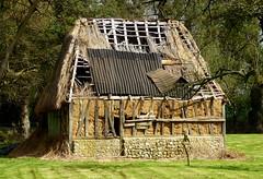 Le charme de ce qui fut (chriskatsie) Tags: normandie normandy campagne countryside hutte cabane paille chaff toit roof architecture temps time degradation usure champ meadows tree