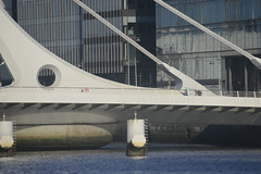 Samuel Beckett Bridge Detail (David Lev) Tags: ireland dublin river liffey bridge santiagocalatrava