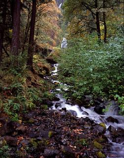 Wahkeena Falls, Autumn 2012