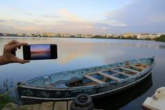 IMG_4955 (mohandep) Tags: madivala lakes bangalore wildlife scenery sun flowers insects birding buses