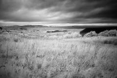 Strandhill (Infrakrasnyy) Tags: sony nex 5n alpha full spectrum ir infrared bw 093 black white monochrome colorless strandhill sligo ireland beach atlantic ocean surf rocks clouds gloom