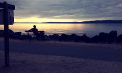 Man on a bench, relaxing at sun down, under gray clouds, sign, path, Saltwater State Park, South Des Moines, Washington, USA (Wonderlane) Tags: 20180831195547 manonabench relaxingatsundown undergrayclouds sign path saltwaterstatepark southdesmoines washington usa blue yellow
