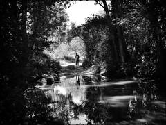 WONDERFUL SILENCE... (Ageeth van Geest) Tags: wood tree forest water grass lake man people silence stilte serene river bw blackandwhite monochrome reflection