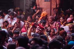 Child in Shri Banke Bihari Mandir, Gulal Holi (AdamCohn) Tags: abeer adamcohn bankebiharimandir hindu india shribankeybiharimandir vrindavan gulal holi pilgrim pilgrimage अबीर गुलाल होली
