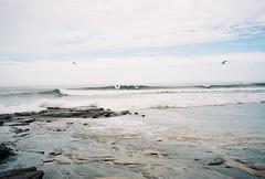 (homesickATLien) Tags: 35mm film art kodak analog expired mjuiii olympus victoria australia beach water ocean therapuetic heal therapy harmony nature surf summer wave gippsland bass coast adrenaline