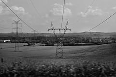 Piekary Śląskie 2018 (Tomek Szczyrba) Tags: bw monochrome noir high voltage pole słup wysokiego napięcia polska poland linie lines drzewa trees niebo