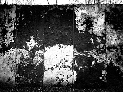 The Wall (mickygloom) Tags: ruins stone forest trees nature destroyed demolished buildings abandoned construction bricks walls wall decrepit old remnants blackandwhite bw monocrhome