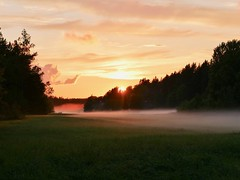 Sunset after the rain (docwiththecamera) Tags: colorful ray light evening tree forest cloud sky sun sunset field mist fog