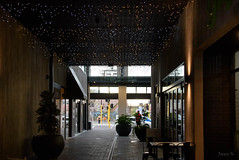 Starlit (Jocey K) Tags: newzealand nikond750 christchurch allyway plants pots lights silhouettes rebuild building door cbd
