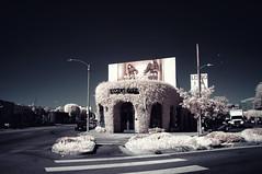 Marc Jacobs (Infrakrasnyy) Tags: sony nex 5n alpha hoya r72 infrared ir filter melrose fairfax los angeles california marc jacobs