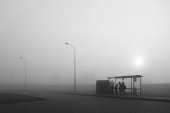 Fogg (Kornelson) Tags: fogg foggy foggyday bus busstop morning sun surise poland fuji fujifilm fujinon xt1 xf18135