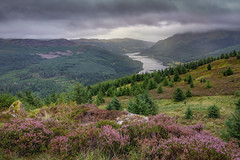 Heather and Weather (jasty78) Tags: beinnantsidhein benshian lochlubnaig hills landscape heather weather trossachs strathyre scotland nikond7200 tokina1116mm