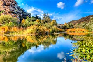 Malibu Lake Ferns & Lilly Pads Fine Art Landscape Photography: Malibu Creek State Park Autumn Colors Landscape. Epic High Resolution Fine Art Pastoral Countryside White Fluffy Clouds Lake Reflections Landscape Photography! Nikon AF-S NIKKOR 14-24mm f/2.8G