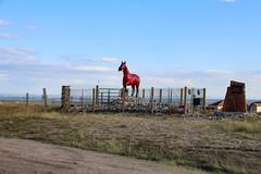 Cold War Horse - Rocky Flats, Colorado (BeerAndLoathing) Tags: radiation usa 2017 art rockyflats 77d protest colorado statue atomic canon horse september summer