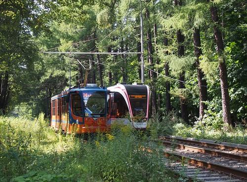 Трамвай в парке Измайлово ©  Liendain