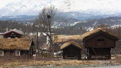 Rauland 1.6, Telemark, Norway (Knut-Arve Simonsen) Tags: rauland telemark norge норвегия norway noruega norwegen norvegia norvège नॉर्वे 挪威 ノルウェー நோர்வே νορβηγία sydnorge sørnorge østlandet norden scandinavia скандинавия