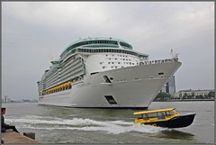 Departure of cruiseship Independence of the Seas in Rotterdam - 29/08/2018 (wrblokzijl) Tags: independenceoftheseas independenceots cruiseship cruiseschip royalcaribbean kreuzfartschiff cruiseliner oceanliner cruise naviredecroisière paquebot boat ship 遊輪 круизное судно crucero nave crociera croisière navire cruzeiro krydstogtskib κρουαζιερόπλοιο cruiseskip risteilyalus 游轮 kryssningsfartyg クルーズ船 rotterdam port kryssningsfartyget bateaudecroisière nlrtm wilhelminakade cruiseport departure watertaxi