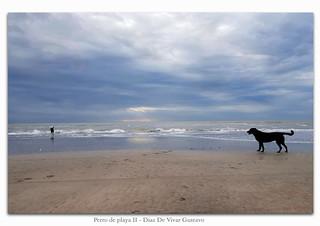 Perro de playa II - Diaz De Vivar Gustavo
