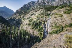 Rocky Mountains, Ouray, Colorado (Alida's Photos) Tags: ouray colorado rockymountains rockies sanjuanmountains pinetrees