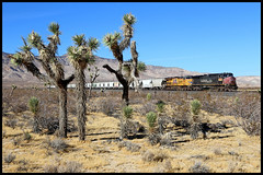 UP 6229 (golden_state_rails) Tags: up union pacific sp southern espee sp181 181 spatch mojave ca california tehachapi pass mp377 joshua tree