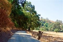 DSC_1686-a10 (stumbleon) Tags: nikondslr nikond7200 amadorcountycalifornia landscape trees california rural countryroads grassland rollinghills