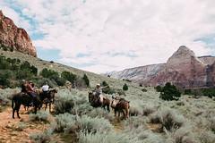 Canyon trail ride 2 (Kurtis Chen) Tags: fujifilim x100t vsco travel desert landscape camping zion national park horseback riding horse mountain