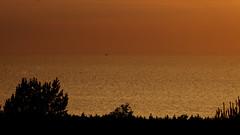 seascape (Darek Drapala) Tags: sea seashore seascape sun sky silhouette sunset skyskape reflection reflects red yellow baltic nature natural panasonic poland polska panasonicg5 lumix light naturaleza water waterscape