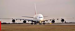 Airbus A380-861  A6-EOY — Emirates Airlines (Wajdys) Tags: airbus a380861 a6eoy emiratesairlines emirates airlines expo2020 airbus380 aircrafts airplanes a388 a380 a380800 cn209 road runway avión aviones series861 4engines jet prglkpr photo spotter spotters planespotting followme amazing cool photography photographer letadla letisko letiště flughafen airport praha prague praga prag vaclavhavelairportprague ruzyně ruzyne departures arrivals flickr travel transport window eu europe czech czechia airfleets airliners plane planes olympus pl7 ed75300mm taxiing wheel gear dubai uae grass cockpit text sky aircraft airplane