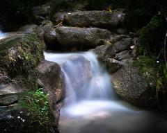 Where peaceful waters flow... (icemanigation) Tags: stream waterfall longexposure water creek moss rocks rock stone stones nature naturephotography natureselegantshots natureza woods woodland forest tranquility serenity serene