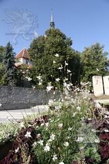 Tallinn_2018_039