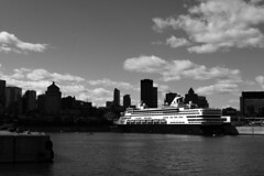 White visitor (Papaye_verte) Tags: cruiseship cruise ship escale paquebot port harbor cityscape harbour portofcall