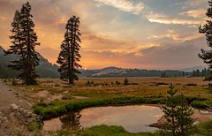Yosemite High Country at last light, from my favorite place in the park, Tuolmune Meadows. #yosemiteconnect (cepek.jeff) Tags: yosemiteconnect tuolumne yosemite yosemitenationalpark sunset