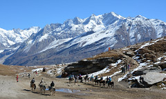 Rohtangpass on horseback (draskd) Tags: rohtangpass manali himachalpradesh horseback cold landscape mountains valley himalayanpass rohtang snow snowfield highpass mountainrange shimla tourist horse people mountainscape sky mountain