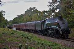 Streak To Swanage. (Jordon Skinner) Tags: a4 pacific 60009 union south africa approaches holme lane bridge with delayed 1y50 london victoria swanage railway