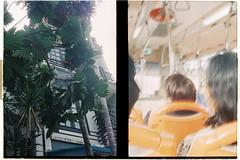 000048 (jovenjames) Tags: 2017 diptych olympus pen eed fujicolor 100 analog saigon vietnam hcmc broken camera snapshots