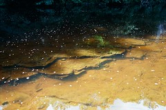 21060008 (christopher.harrall) Tags: river reflection cbh6767 ais film