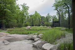 Lion enclosure (kevinvarzoos) Tags: rotterdam zoo diergaarde blijdorp lion exhibit
