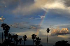 Make A Wish Foundation (oybay©) Tags: suncitywest monsoon monsoon2018 arizona season rain wind summer weather sunset double rainbow color colors cactus saguaro sky skies cloudy shades curves yin and yang cheap trick surrender nature natural peoria vistancia vivid serendipity outdoor