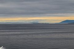 20180812-0002 (Jason Foy) Tags: bcferries britishcolumbia canada jasonfoy pacificnorthwest pugetsound sanjuanislands