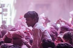 Pink Gulal in Shri Banke Bihari Mandir During HOli (AdamCohn) Tags: abeer adamcohn bankebiharimandir hindu india shribankeybiharimandir vrindavan gulal holi pilgrim pilgrimage अबीर गुलाल होली