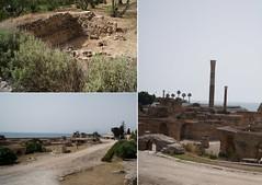 Baths of Carthage (Insher) Tags: bathsofcarthage tunisia tunis northafrica bathsofantoninus ancient roman empire تونس