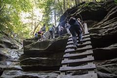 2018_09_01_TurkeyRun_CS (ConstanceiS) Tags: indiana turkey run hike nature erosion formations valley canyon climb suspension bridge ladder