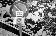 19 img221a_DxO (Domenico Cichetti) Tags: bw bn selfdevelope argentique kentmere100 blackwhite blackandwhite monocrome analogicait analogico