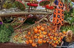 Tuinfeest,Bloemencorso,Eelde,Drenthe,the Netherlands,Europe (Aheroy) Tags: aheroy aheroyal drenthe eelde corso bloemencorso bloemencorsoeelde2018 bloemencorsoeelde pompoenen floralprocession flowerparade redhair roodhaar art kunst pumpkins tuinfeest oogst