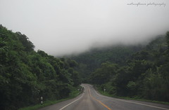The long and winding road. (natureflower) Tags: long road winding foggy