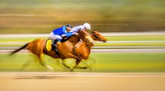 Speed Rush (JDS Fine Art Photography) Tags: horses horseracing competition challenge speed rush adrenaline speedburst inspirational panning motionblur racetrack sports jockeys horserace