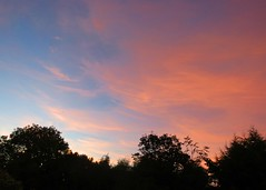 25Jul18 Sunset sky (Daisy Waring World) Tags: sky clouds pink sunsetcolours