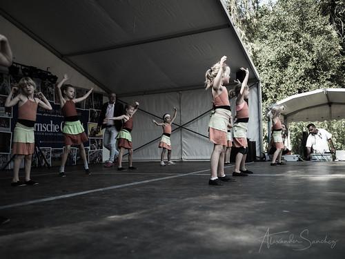 Cultureel Festival Baarn 2018 - Alexander Sanchez